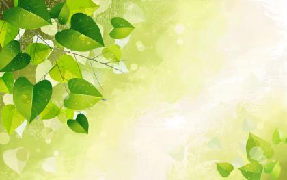 1920x1200养眼绿色壁纸